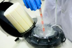 Stem Cell Therapy Thailand Eyes